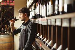 O barman está na adega e os cheiros wine no vidro Imagem de Stock Royalty Free