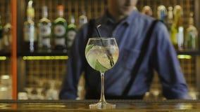 O barman terminou fazer um cocktail e ajustou-o na frente da câmera vídeos de arquivo