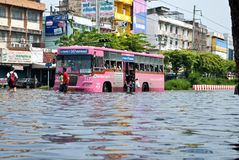 O barramento na estrada da inundação, inundação de Banguecoque Fotos de Stock Royalty Free