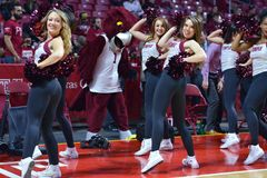 2015 o basquetebol dos homens do NCAA - Templo-Houston Imagem de Stock