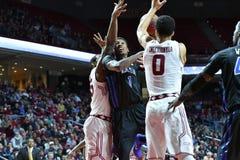 2015 o basquetebol dos homens do NCAA - Templo-Tulsa Imagem de Stock Royalty Free