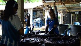 O Batik de trabalho dos povos que tinge o processo de cor de Mauhom prepara a cor de Mauhom vídeos de arquivo