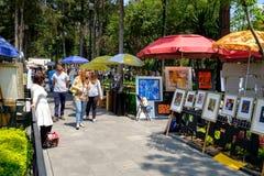 O bazar famoso de sábado na vizinhança do anjo de San em Cidade do México foto de stock