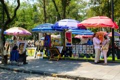 O bazar famoso de sábado na vizinhança do anjo de San em Cidade do México imagem de stock