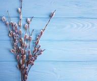 O beautifulon do salgueiro um fundo de madeira azul sere de mãe à primavera rústica da celebração do projeto Imagem de Stock