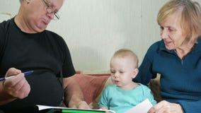 O bebê atrativo tira uma pena com suas avós home no sofá O menino olha fixamente nos animais que tiraram video estoque