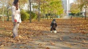 O bebê bonito está jogando no parque do outono com sua mãe sobre as folhas caídas Brincadeiras com uma bola de futebol branca video estoque