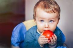 O bebê come a maçã lida fotografia de stock royalty free
