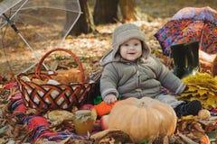 O bebê de sorriso está sentando-se no parque no outono Foto de Stock Royalty Free