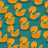 O bebê ducks o teste padrão Fotos de Stock