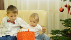 O bebê e o irmão procuram a árvore de Natal próximo decorada atual das caixas, presente grande do brinquedo do urso de peluche da filme