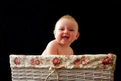 O bebê está rindo na cesta Foto de Stock