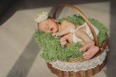 O bebê recém-nascido bonito está dormindo em uma coroa em um horizonta da cesta Imagens de Stock