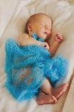 O bebê recém-nascido bonito smling e vertical do sono Foto de Stock