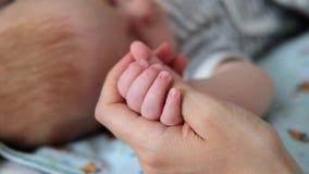 O bebê recém-nascido de sono bonito guarda o dedo da mãe vídeos de arquivo
