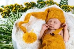 O bebê recém-nascido de sono em uma cesta com as flores amarelas do dente-de-leão lilás e as folhas verdes, em um vestido amarelo imagem de stock