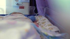 O bebê recém-nascido encontra-se em uma incubadora especial para bebês prematuros unidade de cuidados intensivos para crianças 4K vídeos de arquivo