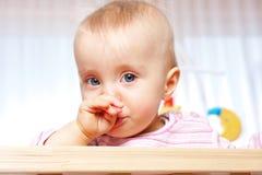 O bebê tem um frio Fotografia de Stock