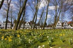 O Beguinage ou o Begijnhof de Bruges Fotografia de Stock Royalty Free