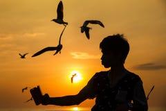 O beira-mar desconhecido de Selfie do nome do homem com o telefone esperto no fundo do por do sol é uma gaivota Imagem de Stock Royalty Free