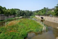 O beira-rio de Ter, Girona, Espanha Foto de Stock Royalty Free