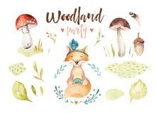 O berçário animal da raposa bonito do bebê isolou a ilustração para crianças Desenho da floresta do boho da aquarela, floresta do ilustração royalty free