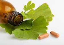 O biloba da nogueira-do-Japão saem e as garrafas da medicina com os comprimidos imagens de stock royalty free