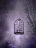 O Birdcage ilustração royalty free