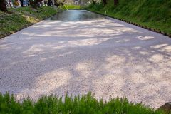 O blizzardHanafubuki da flor de cerejeira e o carpetHanaikada da cereja no fosso exterior de Hirosaki estacionam, Aomori, Tohoku, Fotografia de Stock Royalty Free