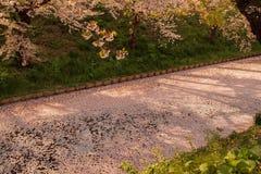 O blizzardHanafubuki da flor de cerejeira e o carpetHanaikada da cereja no fosso exterior de Hirosaki estacionam, Aomori, Tohoku, Fotos de Stock
