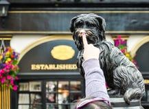 O bobby de Greyfriar em Edimburgo Fotos de Stock Royalty Free