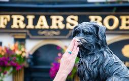 O bobby de Greyfriar em Edimburgo Imagens de Stock Royalty Free
