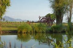 O boi carts ao lado dos canais e dos campos com montanha Imagens de Stock Royalty Free