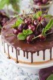 O bolo branco da geleia com base da baunilha e cobertura do chocolate decorou cerejas frescas foto de stock