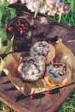 O bolo com a cereja na decoração é filmado no jardim Fotografia de Stock Royalty Free