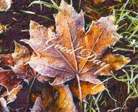 O bom dia da inscrição no fundo das folhas secas foto de stock
