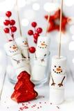 O boneco de neve engraçado do marshmallow para o deleite caçoa para o Natal Foto de Stock
