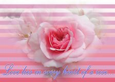 O bonica cor-de-rosa macio atrativo brilhante aumentou com forma do coração e projeto listrado do fundo ilustração royalty free