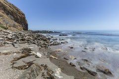 O borrão de movimento acena no parque da linha costeira da angra do olmo em Califórnia imagem de stock royalty free