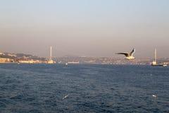 O Bosphorus, Istambul Fotos de Stock Royalty Free