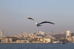 O Bosphorus, Istambul Foto de Stock