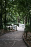 O bosque e o trajeto de bambu no jardim Imagens de Stock Royalty Free