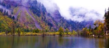 O bosque e os lagos colorized foto de stock royalty free