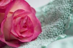 O botão cor-de-rosa magnífico encontra-se no laço macio da hortelã fotografia de stock royalty free