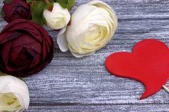 O botão de ouro vermelho e branco floresce o sinal vermelho do coração do ranúnculo no fundo de madeira cinzento Copie o espaço Imagem de Stock Royalty Free