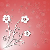O bouganvilla de papel de Flower Fotos de Stock