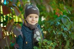 O boyl feliz da criança joga as folhas e os risos de outono fora imagem de stock