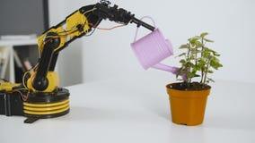 O braço do robô está molhando uma flor Experiência com manipulador inteligente Modelo do robô industrial video estoque