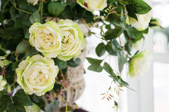 O branco bonito levantou-se Foto de Stock Royalty Free