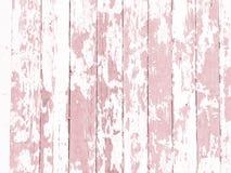 O branco gasto da textura da madeira-grão lavou com pintura de descascamento afligida Fotos de Stock Royalty Free